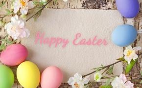 Картинка цветы, дерево, яйца, весна, пасха, пастель, happy, flowers, spring, eggs, easter, pastel