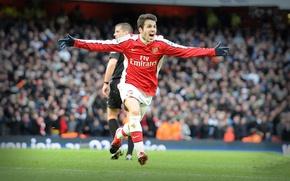 Картинка Fabregas, Arsenal, Premier League