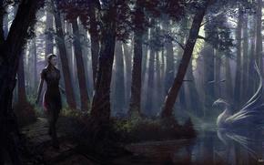 Картинка девушка, озеро, рисунок, тропа, дух, фэнтези, арт, призрак, лебедь, girl, fantasy, красные глаза, swan, ghost, ...