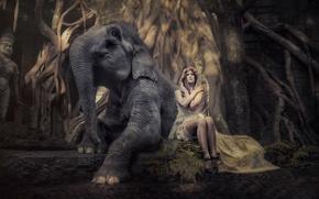 Обои слон, девушка, арт