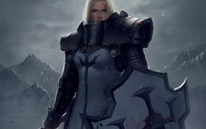Картинка девушка, снег, горы, оружие, кровь, арт, щит, Diablo III, доспех, рана, Crusader