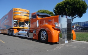 Картинка оранжевый, кабина, custom, truck, reliable, big rig, peterbilt