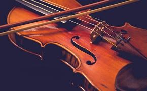 Обои музыка, скрипка, макро