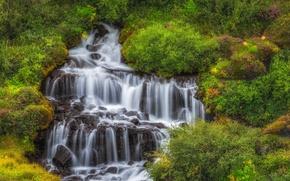 Картинка водопад, каскад, Исландия, кусты, Iceland, Hraunfossar, Хрёйнфоссар