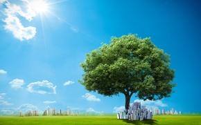 Картинка небо, трава, солнце, облака, креатив, дерево, здания, лужайка