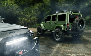 Картинка Light, Jungle, Cars, Green, Black, Rain, Wrangler, Jeep, Rear, Off Road