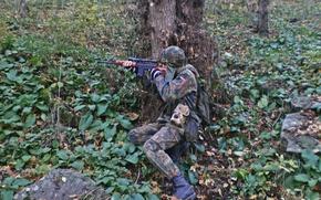 Картинка лес, оружие, СВД, бундесвер, флектарн