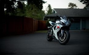 Картинка белый, деревья, дом, white, suzuki, bike, сузуки, supersport, gsx, джмкссер