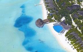 Картинка море, пляж, пальмы, океан, бассейн, домики, Мальдивы, pool, бунгало, Maldives, бар.