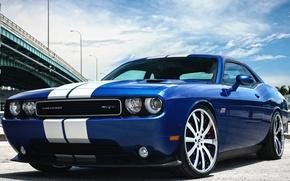 Картинка Dodge, SRT8, Challenger, 392 Hemi