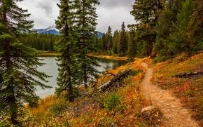 Картинка парк, river, горы, leaves, fall, листья, colors, trees, вода, walk, sky, река, осень, лес, облака, ...