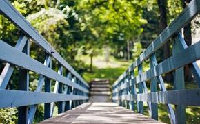 Обои лето, солнце, деревья, мост, природа, дерево, widescreen, обои, листва, ограда, ограждение, день, wallpaper, summer, мостик, ...