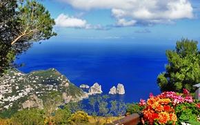 Картинка цветы, горы, остров, Provincia di Napoli, Неаполь, Capri, город, море, зелень, скалы, Italy, Италия, природа, ...