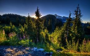 Картинка пейзаж, горы, утро