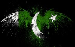 Картинка Eagle, Flag, Pakistan, PCbots