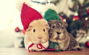 Картинка Love, зима, Vintage, Bokeh, In Love, Winter, В любви, Красочный, Mouse, Сладкий, New Year, Christmas, ...