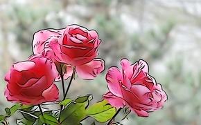 Картинка линии, цветы, краски, розы, лепестки