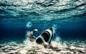Обои качок, вода, акула, мутант