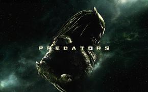 Обои predator, хищник, пришелец, звёзды, космос