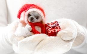 Обои winter, cute, toy, dog, hands, santa, gift, xmas, christmas, зима