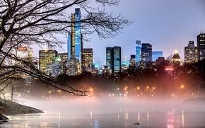Картинка Manhattan, парк, небоскребы, NYC, город, огни, вечер, здания, ветки, Центральный парк, Central Park, New York, ...