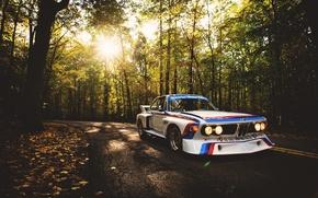 Картинка дорога, авто, лес, бмв, BMW, белая, гоночная