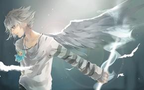 Картинка магия, игрушка, крылья, очки, талисман, Парень, серый фон, белые волосы