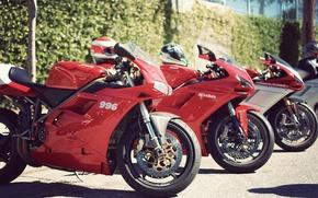 Картинка ducati, sportbike, 996, 1098