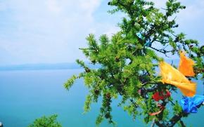 Картинка озеро, ленты, дерево, Лиственница