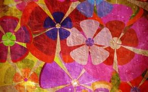 Картинка цветы, фон, текстура, ярко, разноцветие
