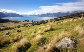 Картинка гора, новая зеландия, Queenstown