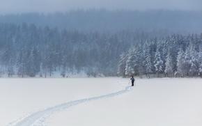 Картинка зима, поле, снег, человек