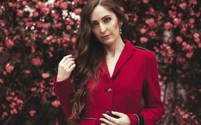 Обои взгляд, девушка, красный, лицо, фон, волосы, пиджак