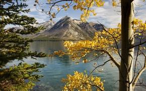 Картинка осень, небо, листья, деревья, горы, Канада, Альберта, озеро Минневанка