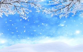 Обои ветки, снег, зима