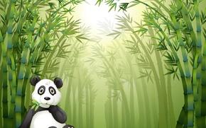 Картинка веточка, отдых, бамбуковый лес, маленькая панда