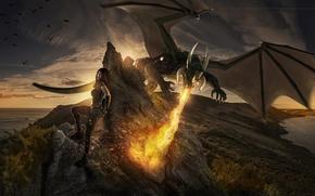 Картинка девушка, фантастика, дракон