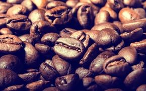 Картинка макро, кофе, кофейные зёрна