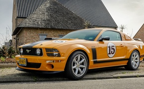 Картинка Mustang, Ford, Saleen, 302, Jones, Parelli