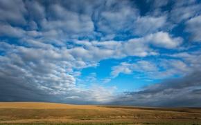 Картинка поле, облака, голубое, Небо, sky, field, blue, clouds