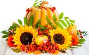 Картинка осень, листья, подсолнухи, ягоды, яблоки, урожай, тыква, фрукты, груши, autumn, pumpkin, sunflower, harvest