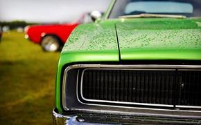 Картинка green, dodge, charger