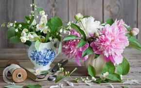 Обои цветы, жасмин, пион