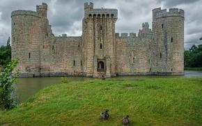 Картинка Англия, England, Bodiam castle, Замок Бодиам