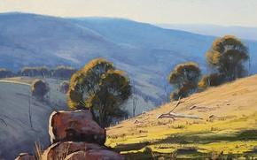Картинка деревья, ветки, природа, камни, холмы, арт, сухие, австралия, artsaus