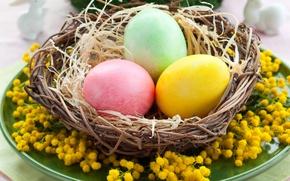 Картинка стол, праздник, яйца, весна, тарелка, Пасха, гнездо, Easter, пасхальные