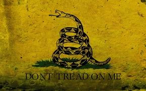 Обои флаг, графика, рисунок, змея