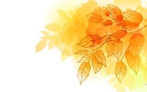 Картинка осень, листья, коллаж, открытка