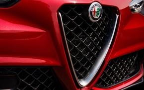 Картинка Лого, Alfa Romeo, Альфа Ромео, Передок
