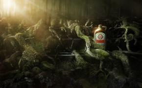 Картинка алкоголь, jagermeister, ликёр